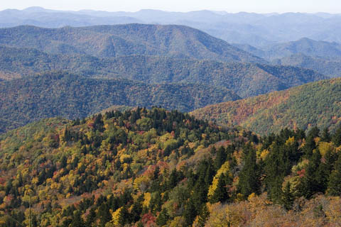 Planning Your Fall Leaf Tour With Island Trader Vacations