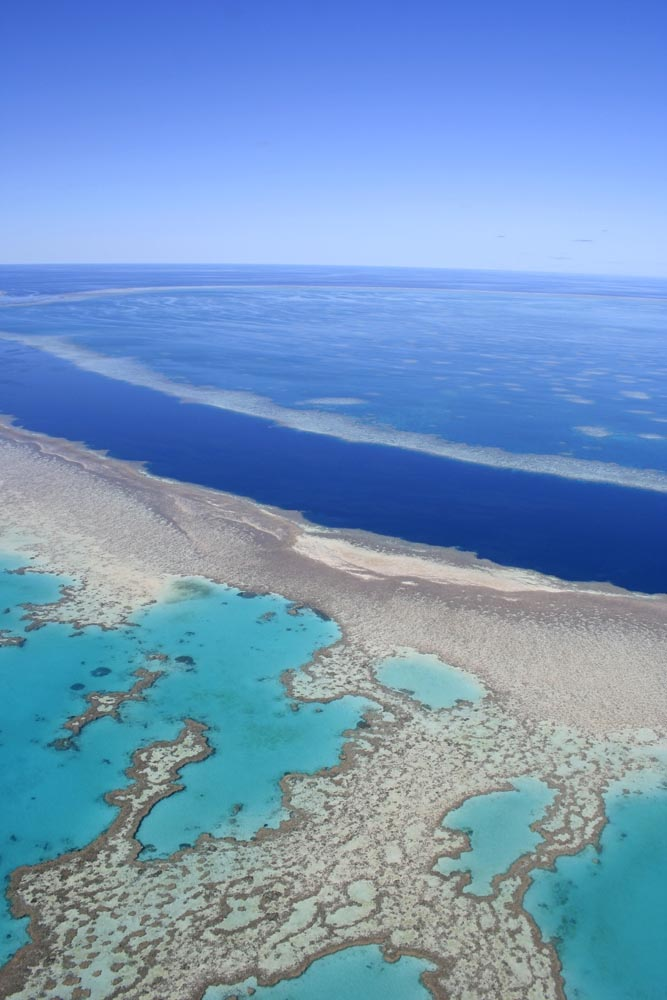 A Great Barrier Reef Adventure with Island Trader Vacations